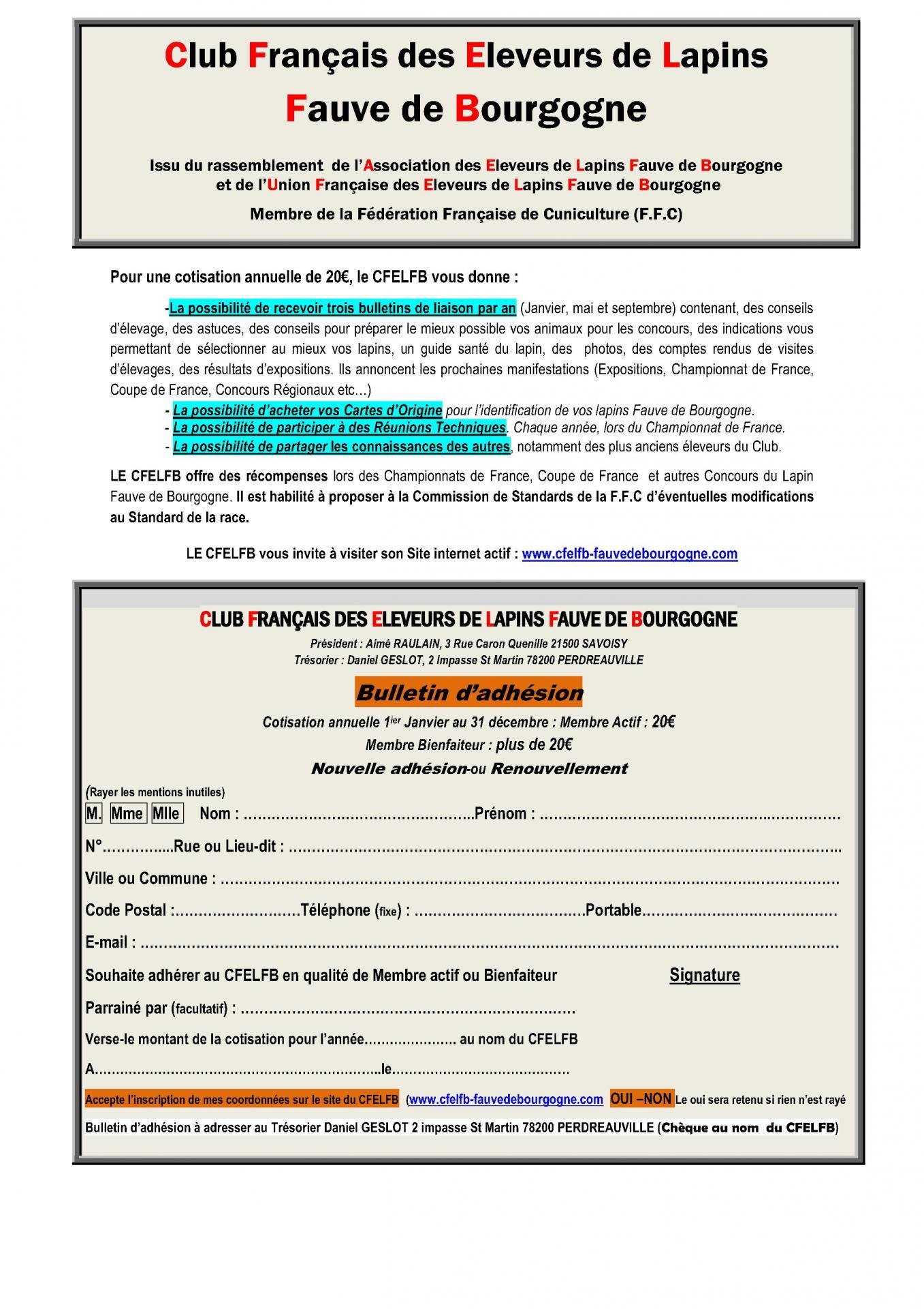 Cfelfb page pub pour la promotion du cfelfb