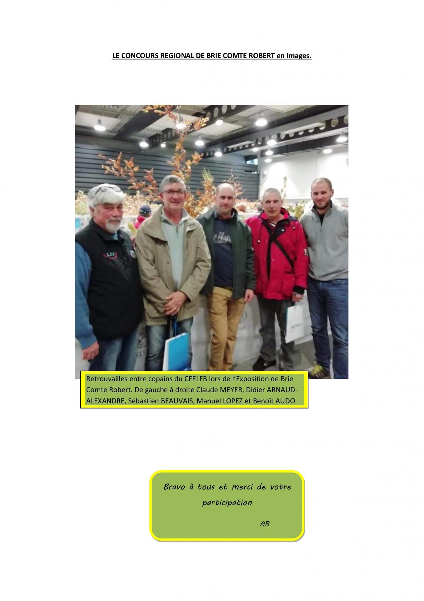 Le concours regional de brie comte robert en images 1
