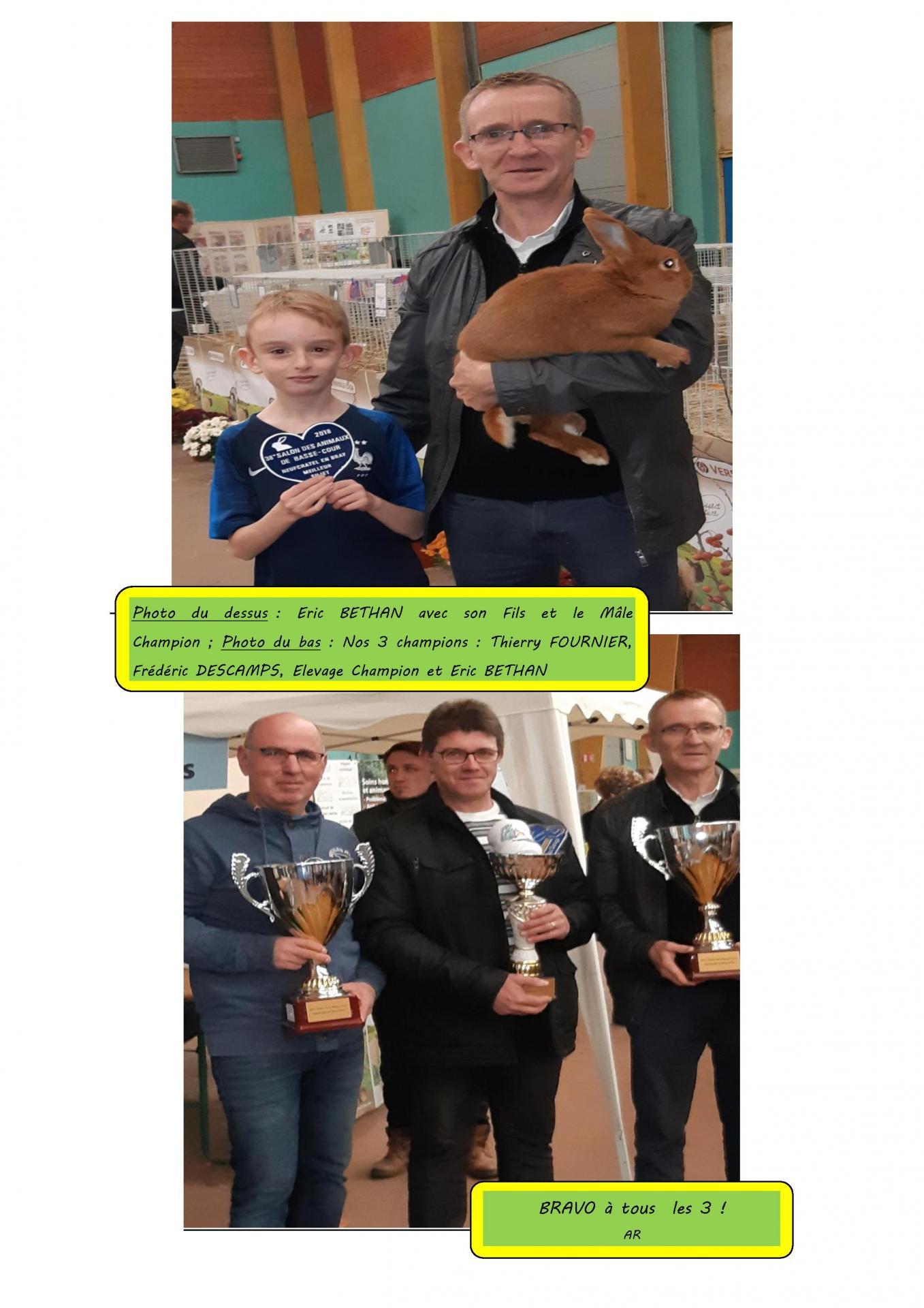 Le concours regional de neufchatel en bray en images 5
